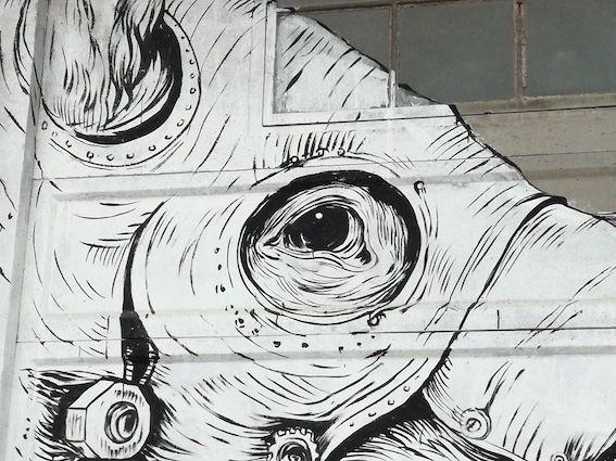 mutonia murale