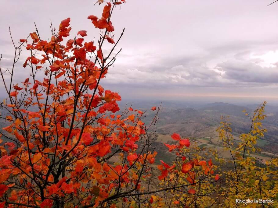 monte aquilone autunno