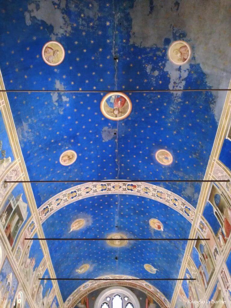 volta cappella degli scrovegni Padova