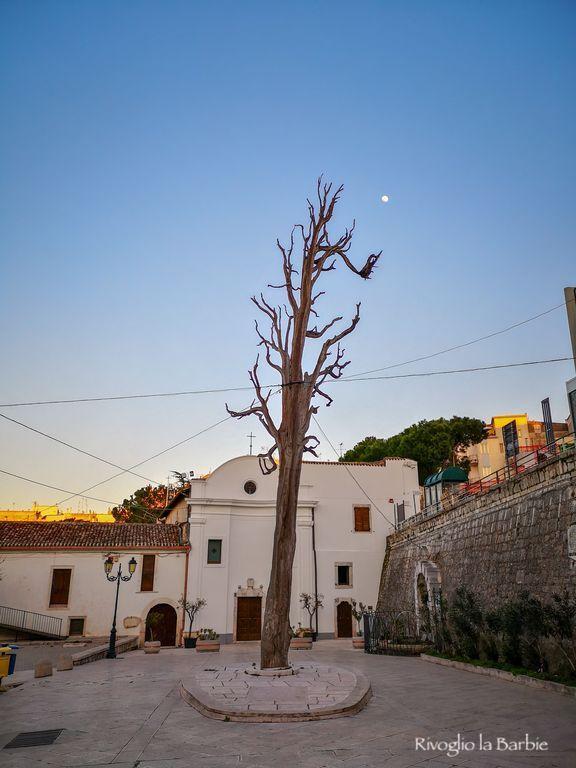 Ischitella albero di San Francesco Gargano