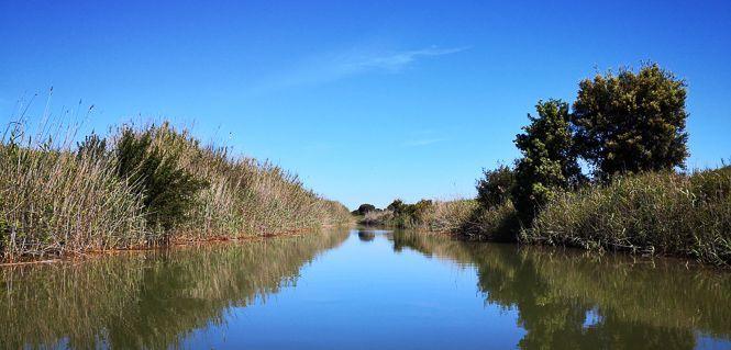 Canale acquarotta Lesina