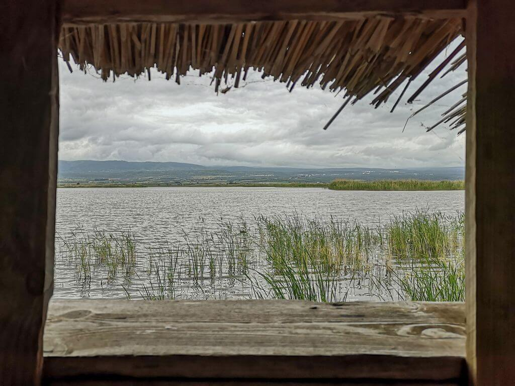 riserva naturale lago di lesina