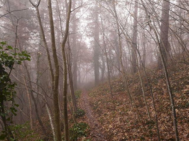 trekking brisighella