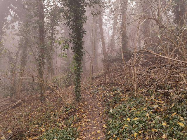 sentiero escursione brisighella