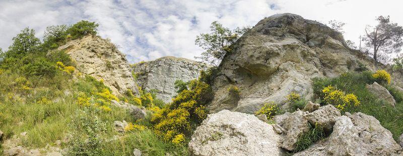 ex cava monticino