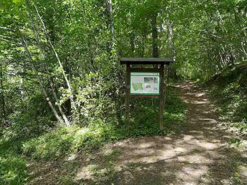 bivio sentiero cascatelle bosco di tecchie
