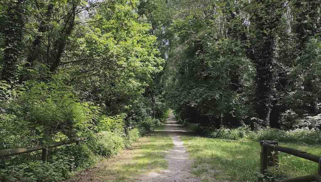 Entrata principale bosco della panfilia