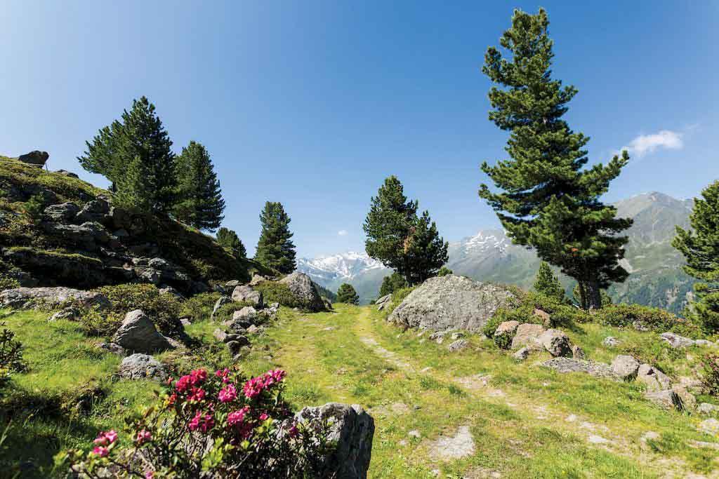 Landscape, Sellrain Valley
